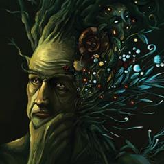 Homme forêt